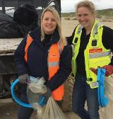 Rare beetle discovered during Pembrey beach clean